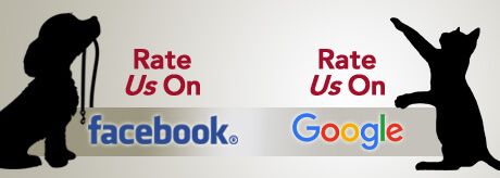 Rate-Us-Online-Banner