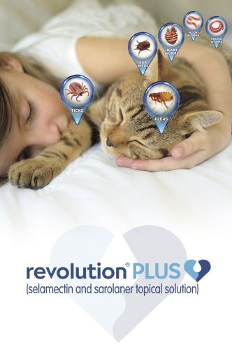 Revolution - Protection from Worms, Ticks, Fleas and more